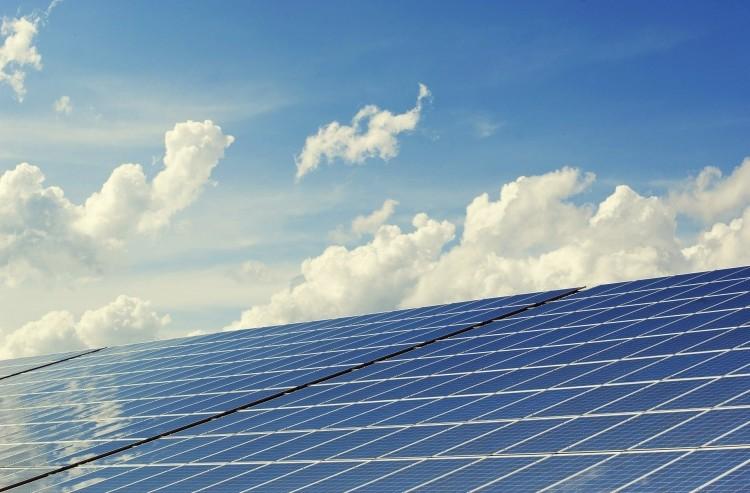 Suspeses les llicències de parcs de renovables en terreny no urbanitzable